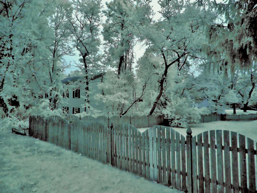 Infrared Photography Photograph - Not So Snow by Thomas  MacPherson Jr