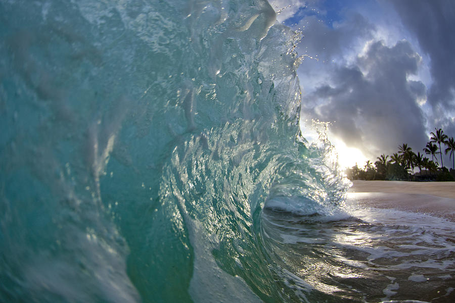 Wave Photograph - Coconut Curl by Sean Davey