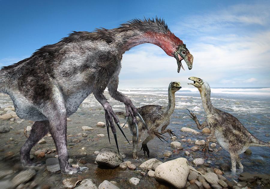 Animal Photograph - Nothronychus Dinosaur Family, Artwork by Science Photo Library
