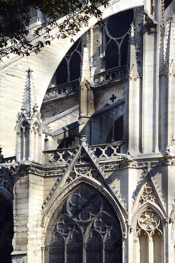 Notre Dame Cathedral Architectural Details by Carla Parris