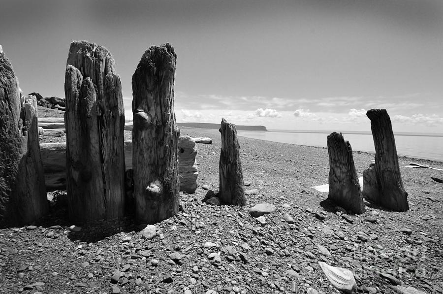 Beach Photograph - Nova Scotia by Randi Grace Nilsberg