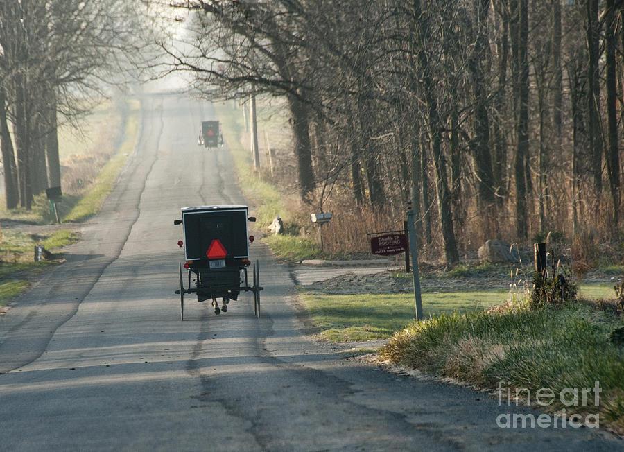 Amish Photograph - November Buggies by David Arment