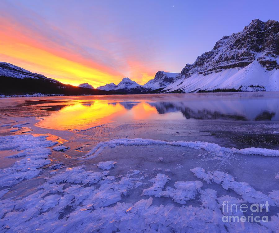 November Freeze 2 Photograph by Dan Jurak