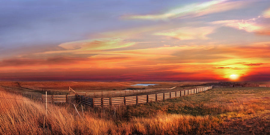 November Sunset on the Cattle Pens by Rod Seel