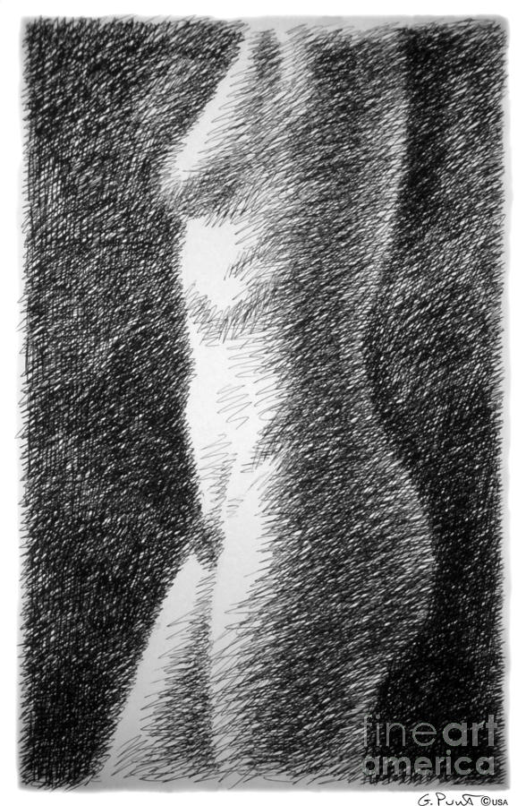 Sketches Drawing - Nude Female Torso Drawings 6 by Gordon Punt
