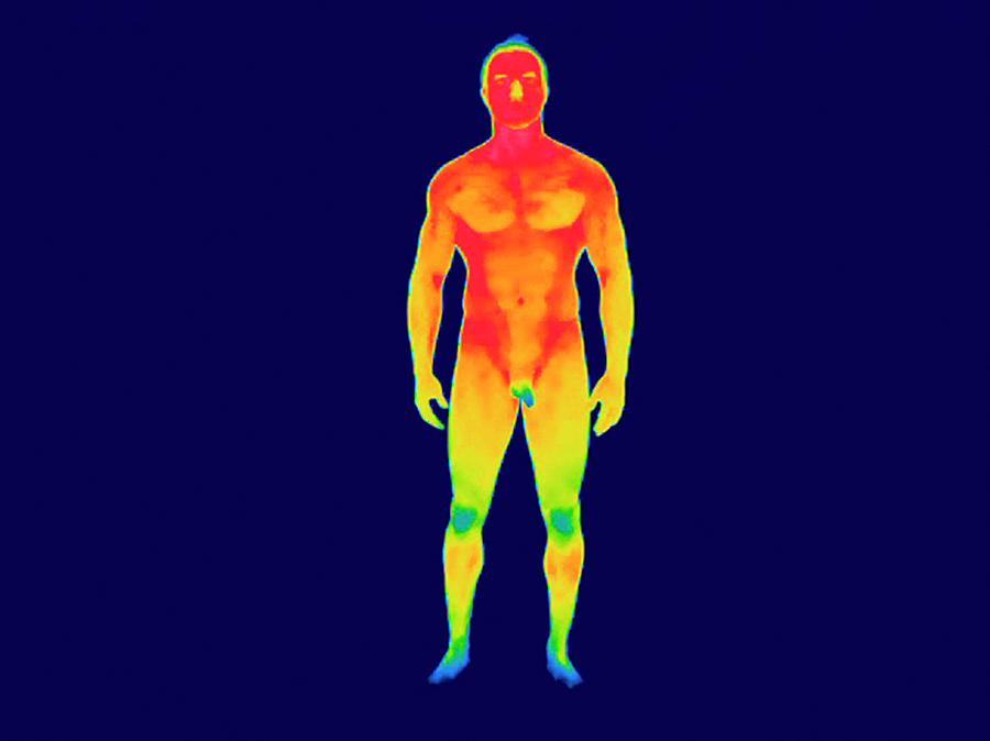 Human Photograph - Nude Man by Thierry Berrod, Mona Lisa Production