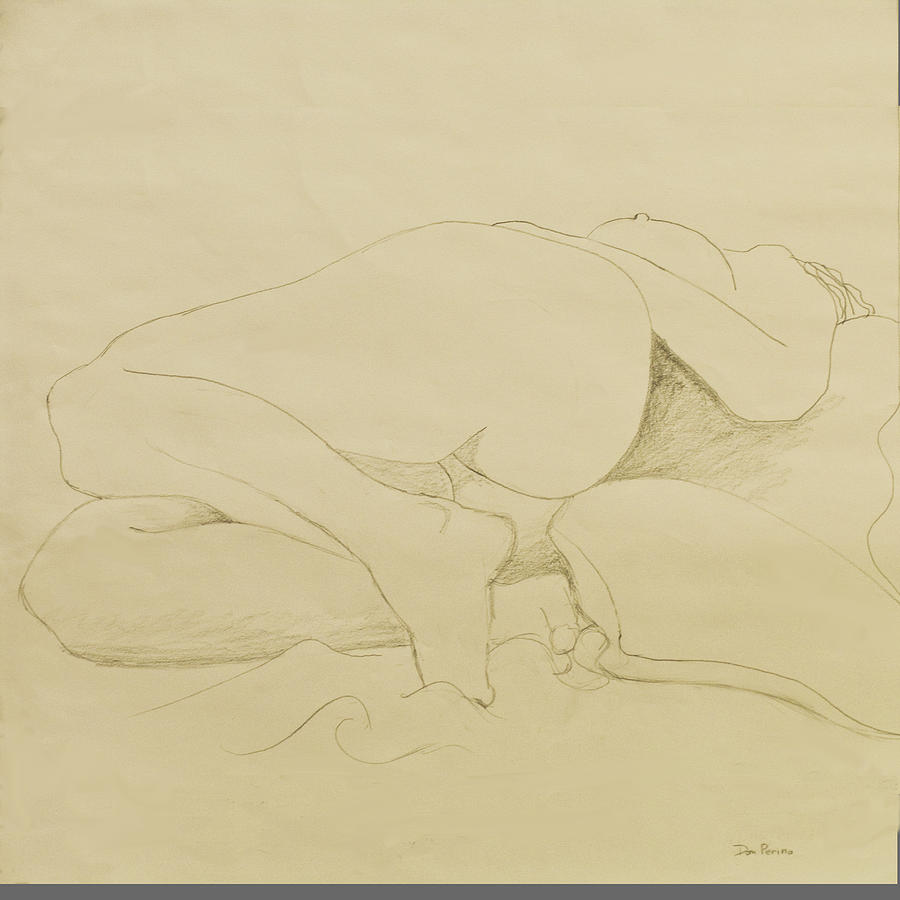 Reclining Drawing - Nude Study by Don Perino