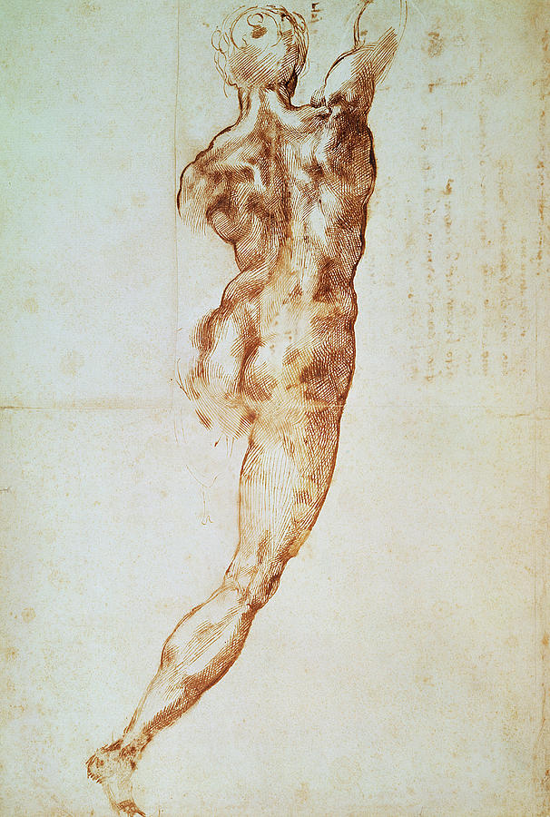 Michelangelo Drawing - Nude, Study For The Battle Of Cascina by Michelangelo Buonarroti