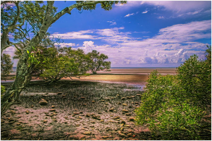 Digital Pyrography - Nudgee Beach Queensland  Australia by Donah Beckhouse