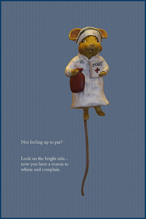 Vertical Photograph - Nurse Mouse by Sally Weigand