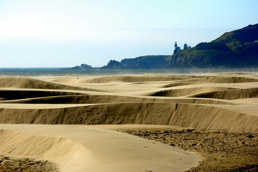 Seascape Photograph - Nye Dunes by Mamie Gunning