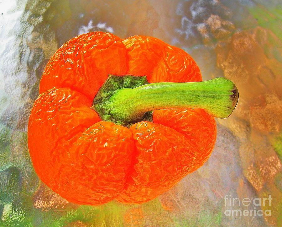 Peppers Photograph - O B P by John King