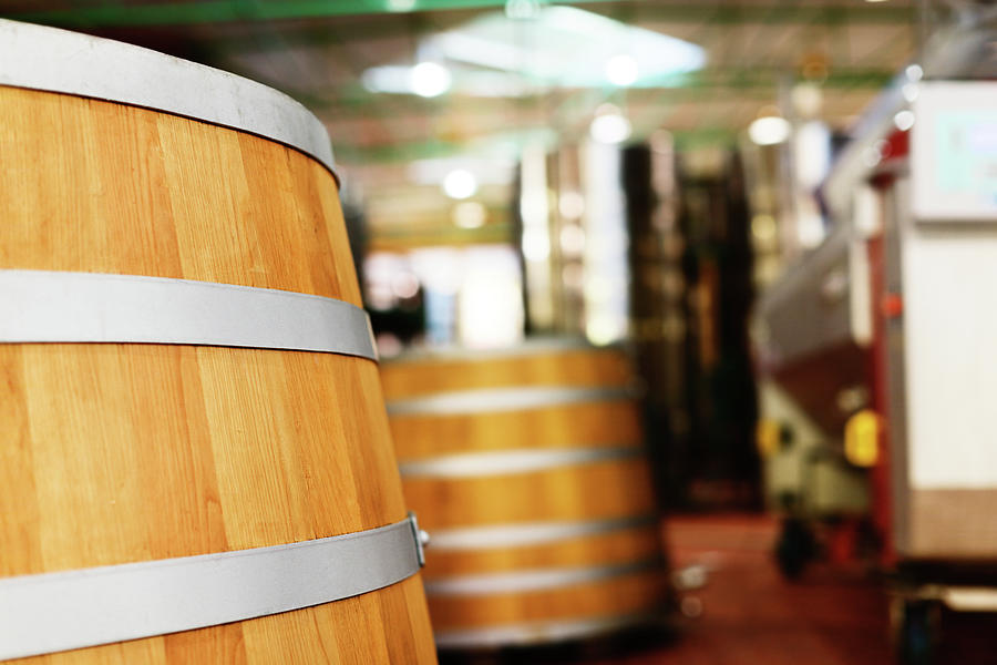 Oak Barrels And Winemaking Equipment In Photograph by Rapideye