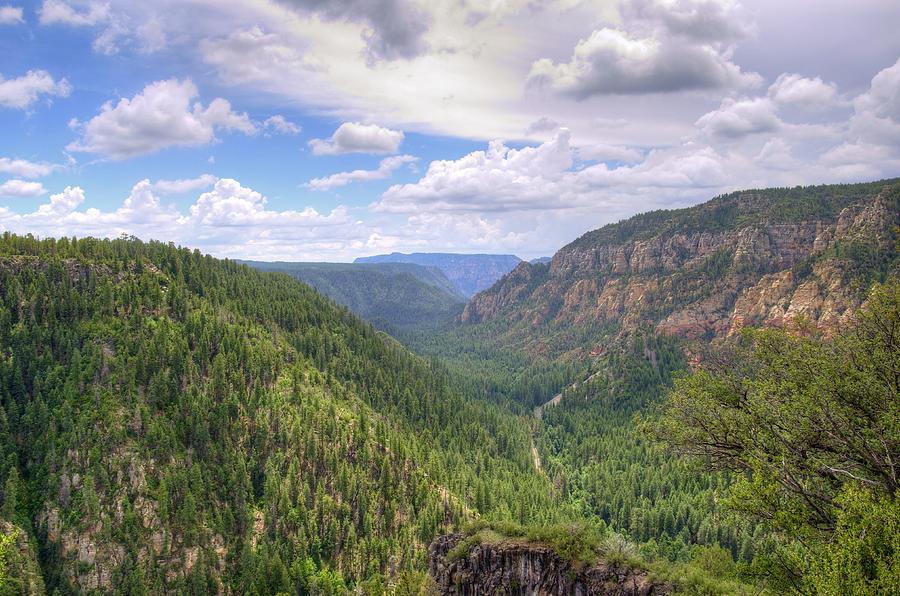 Oak Photograph - Oak Creek Canyon by Ricky Barnard