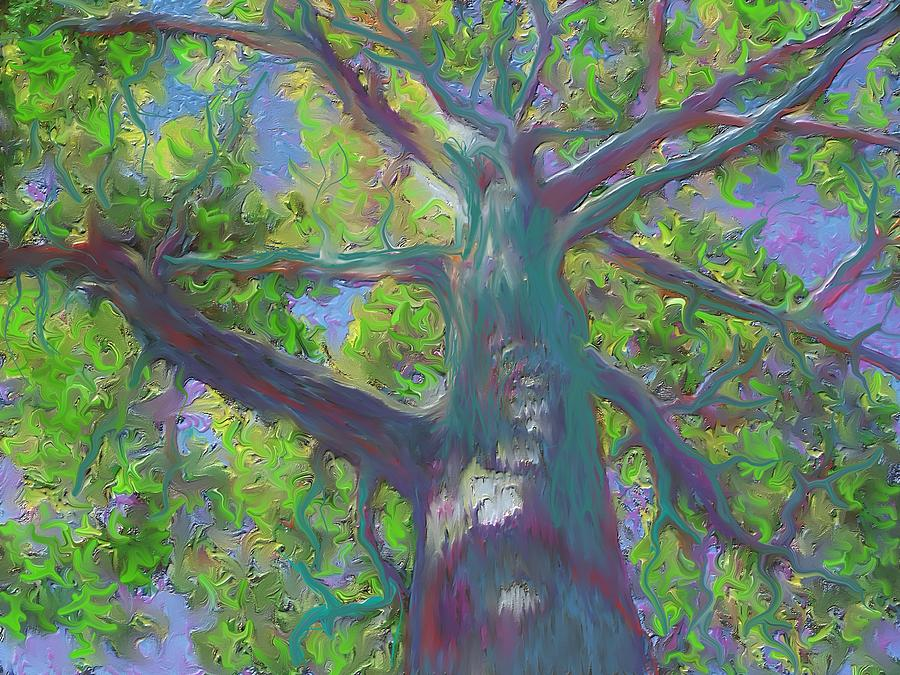 oak tree 1 by Hidden  Mountain