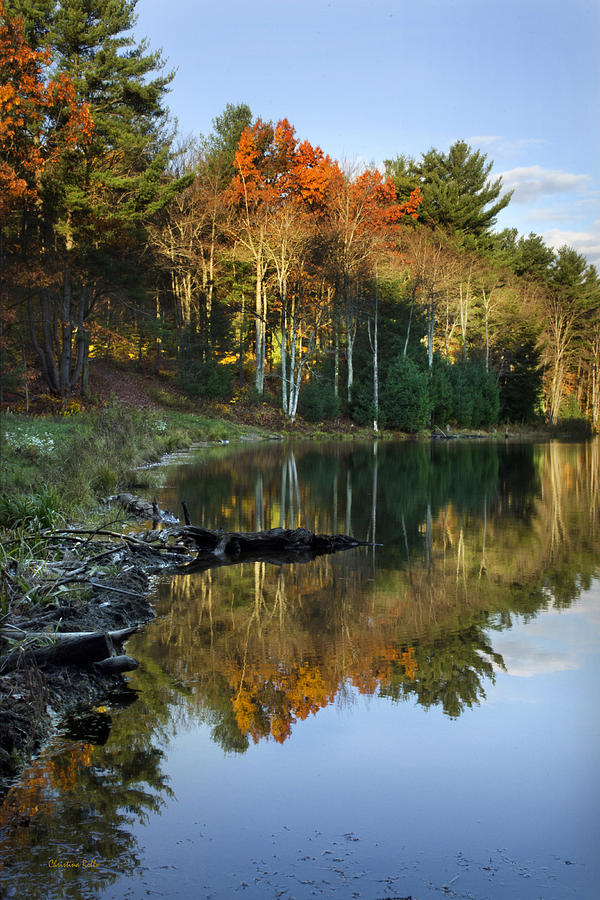 Fall Photograph - Oakley Corners State Forest by Christina Rollo