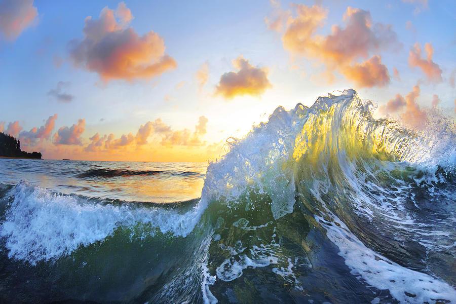 Ocean Photograph - Ocean Bouquet by Sean Davey