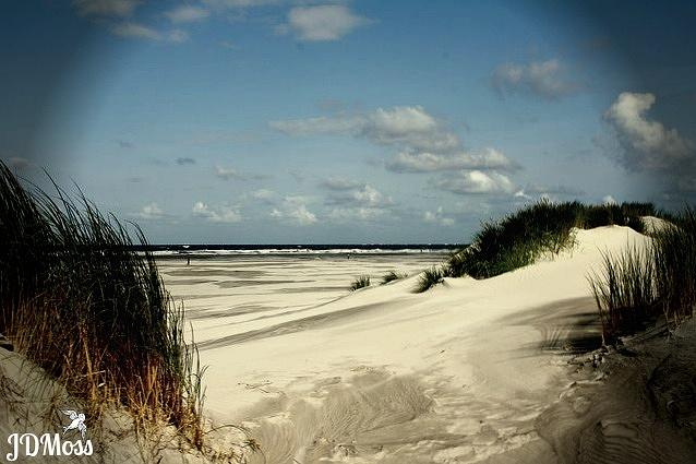 Ocean Photograph - Ocean Front by Janet Moss