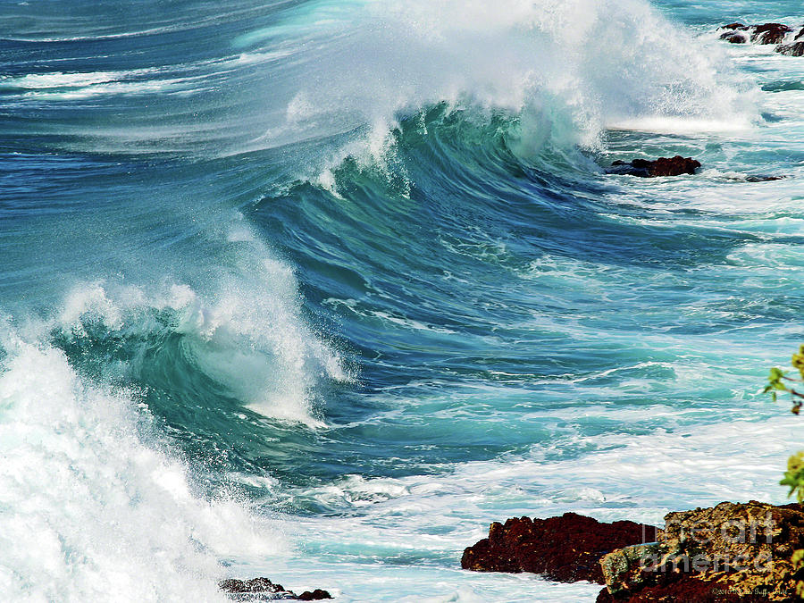 Majesty Photograph - Ocean Majesty by Patricia Griffin Brett