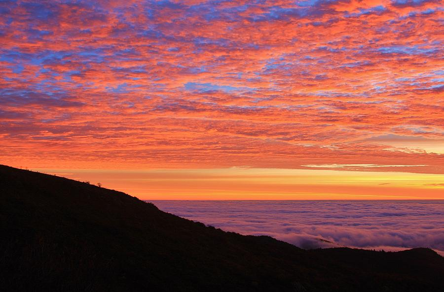 Ocean Of Clouds On The Blue Ridge Photograph