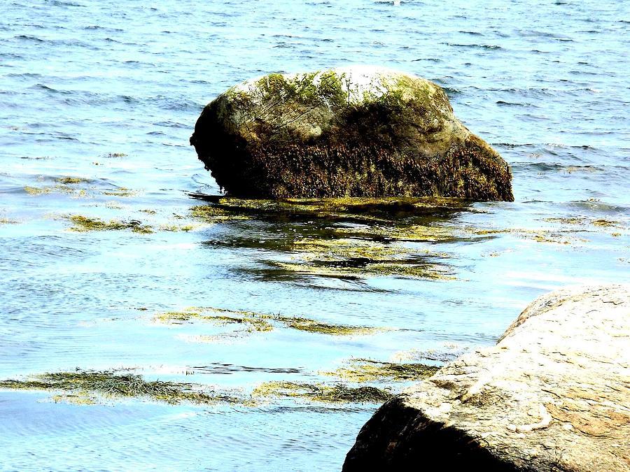 Landscape Photograph - Ocean Rock by Dancingfire Brenda Morrell