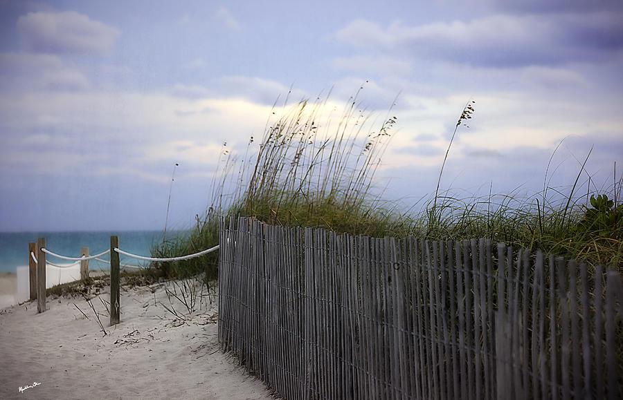 Ocean View 2 - Miami Beach - Florida by Madeline Ellis