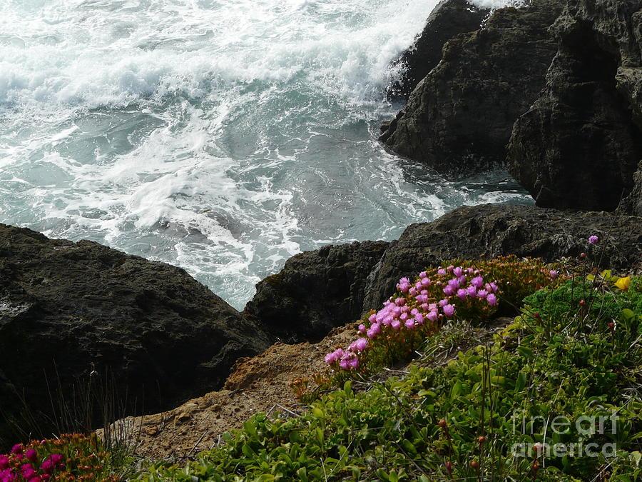 Ocean Photograph - Ocean Wildflowers-2 by Avis  Noelle