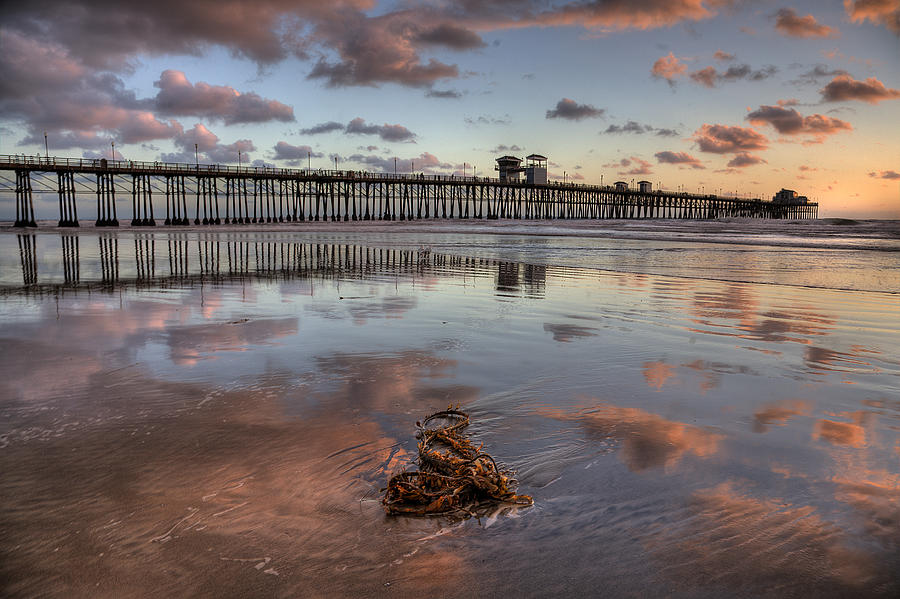 California Photograph - Oceanside Pier Seaweed by Peter Tellone