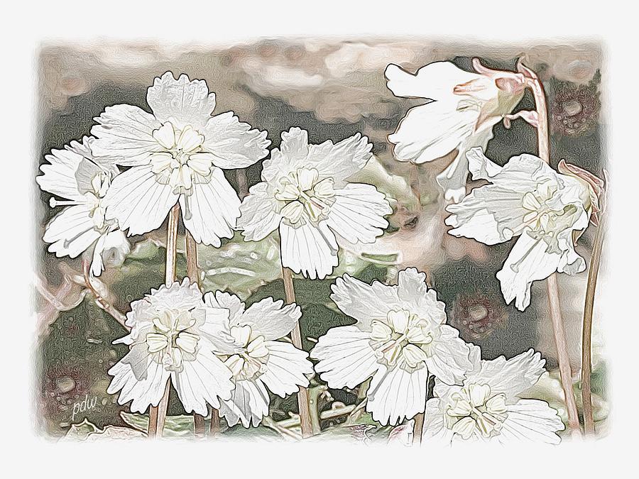 Scenic Painting - Oconee Bells by Philip White