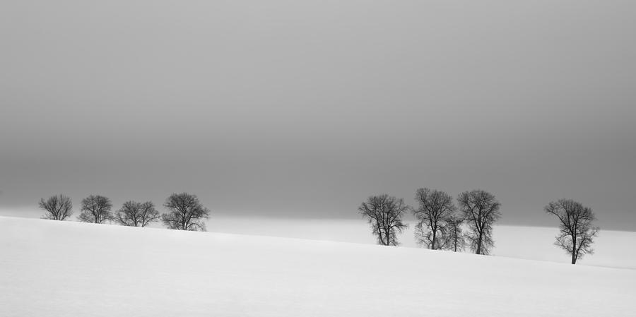 Winter Photograph - Octet by Jaromir Hron