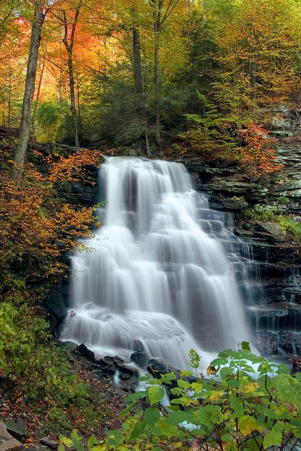 Autumn Photograph - October Foliage Surrounding Erie Falls by Gene Walls
