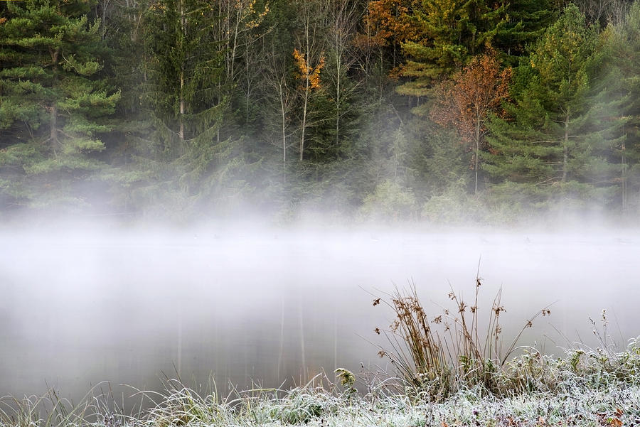 October Photograph - October Frost Landscape by Christina Rollo