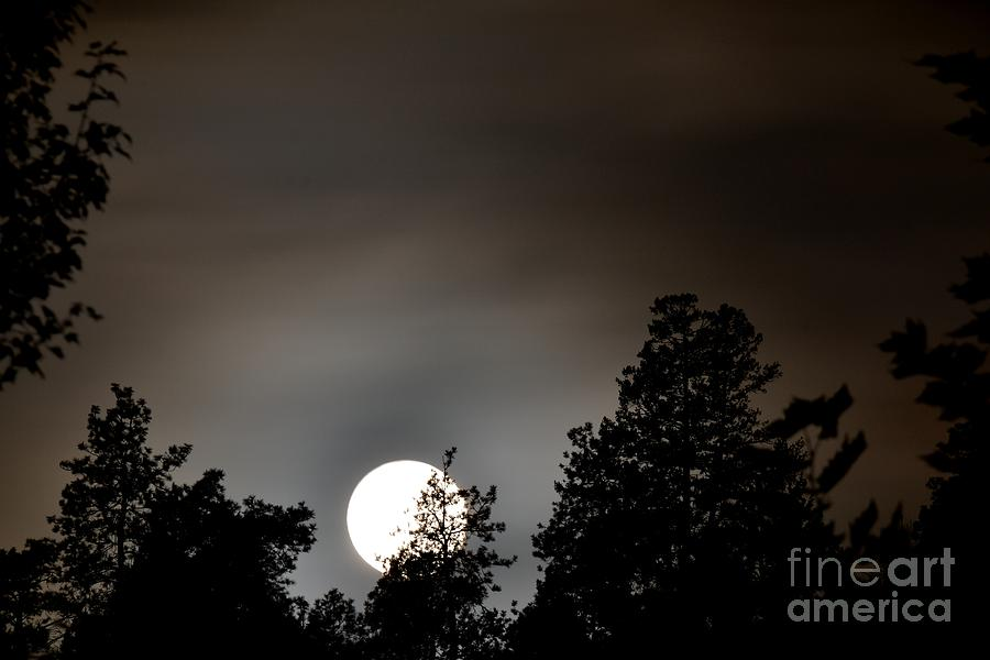 Night Photography Photograph - October Full Moon I by Phil Dionne