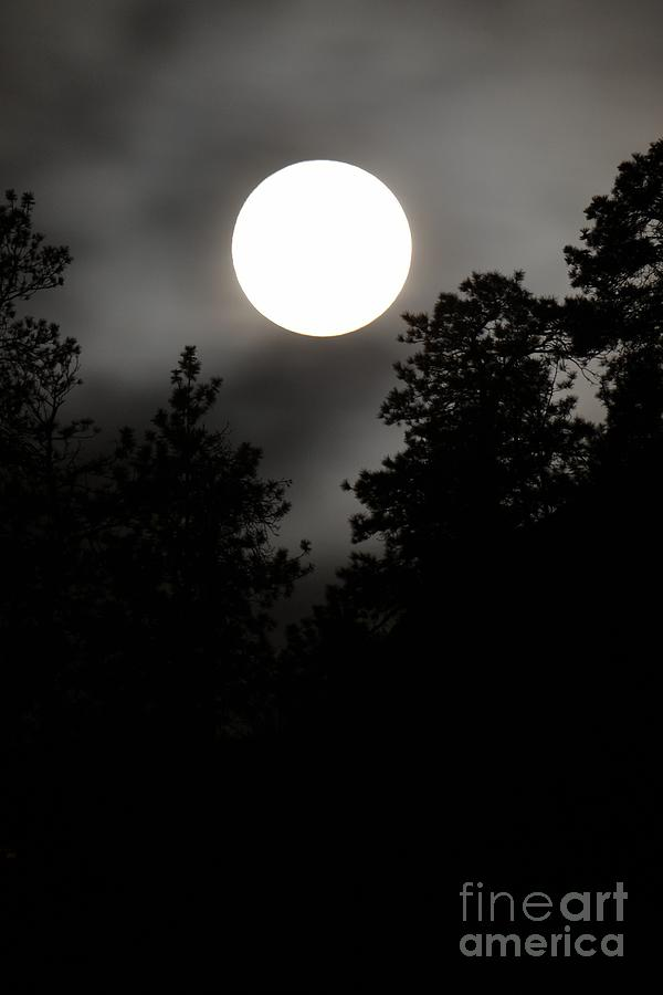 Night Photography Photograph - October Full Moon IIi by Phil Dionne