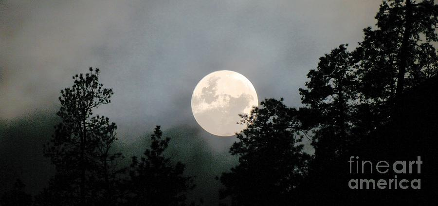 Night Photography Photograph - October Full Moon Iv by Phil Dionne