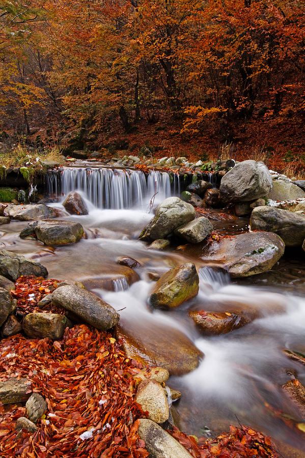 America Photograph - October Stream by Mircea Costina Photography