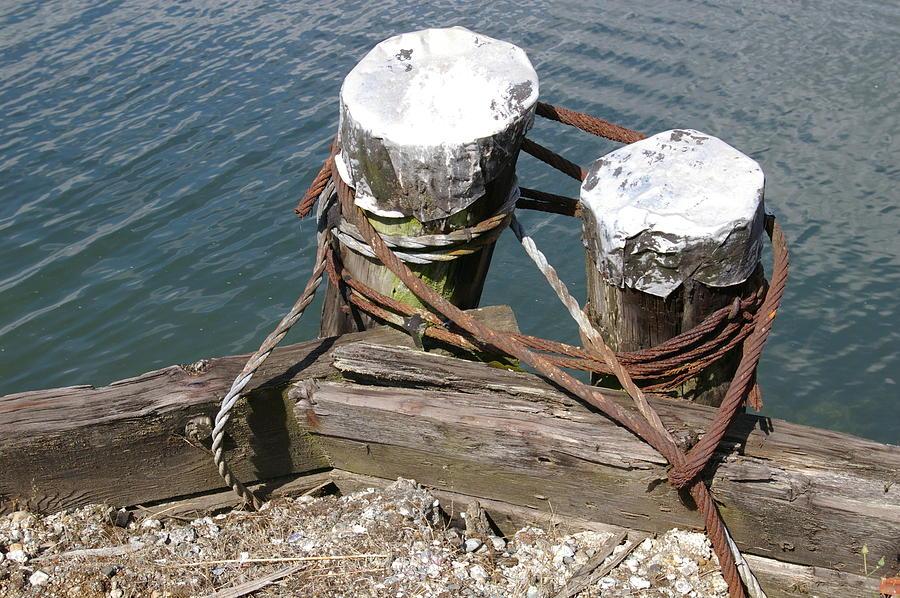Sea Photograph - Odd Pilings by Christine Burdine