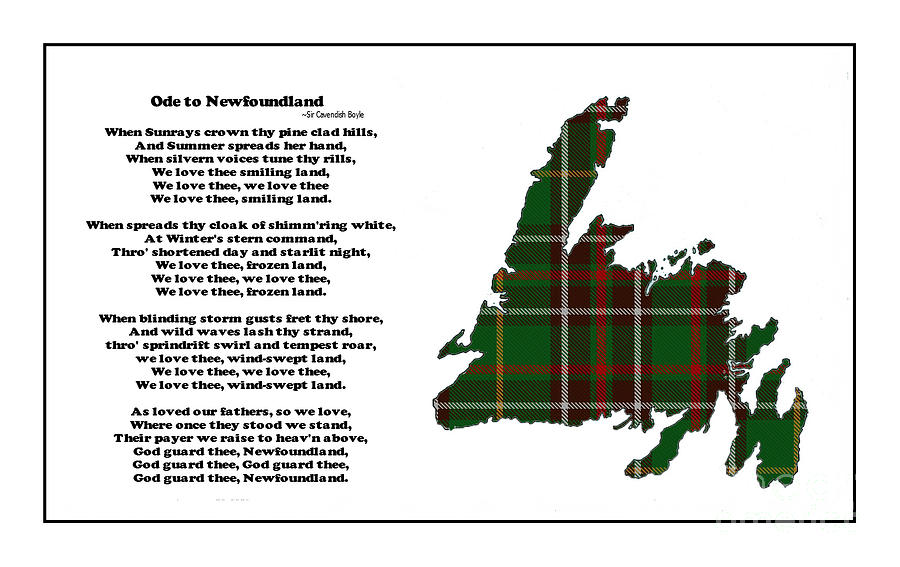 Ode To Newfoundland Photograph - Ode to Newfoundland with Tartan Large Plaid by Barbara Griffin