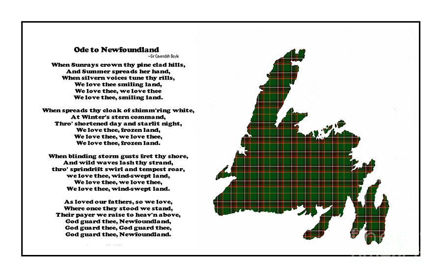 Ode To Newfoundland Photograph - Ode to Newfoundland with Tartan Small Plaid by Barbara Griffin