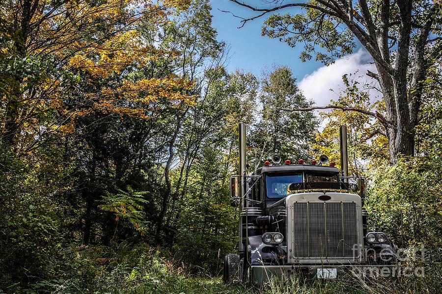 Truck Photograph - Off Road Trucker by Edward Fielding