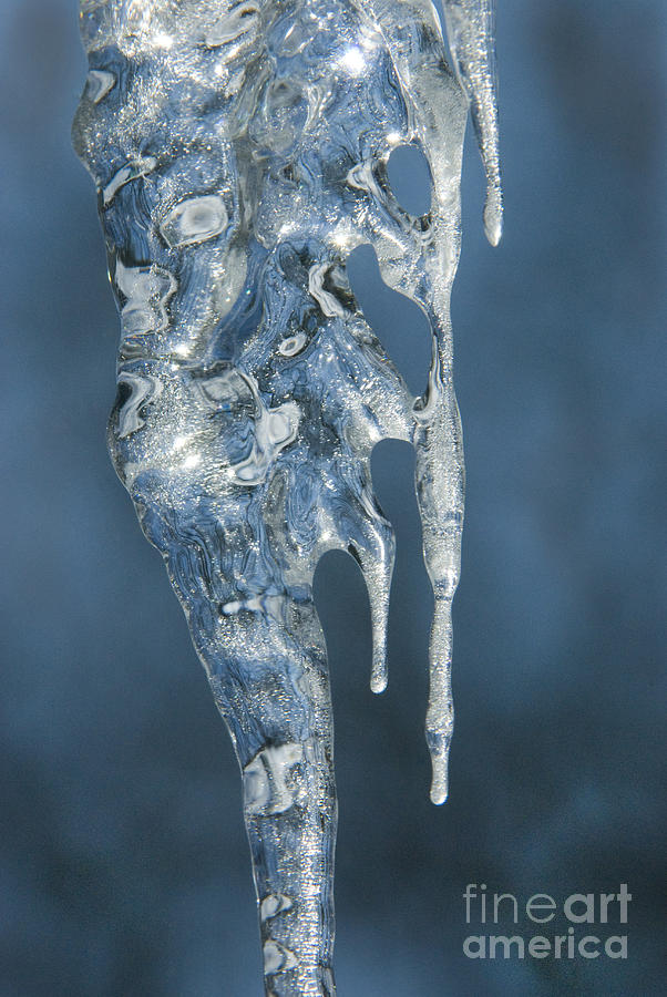 Icicles Photograph - Offspring by Sandra Bronstein