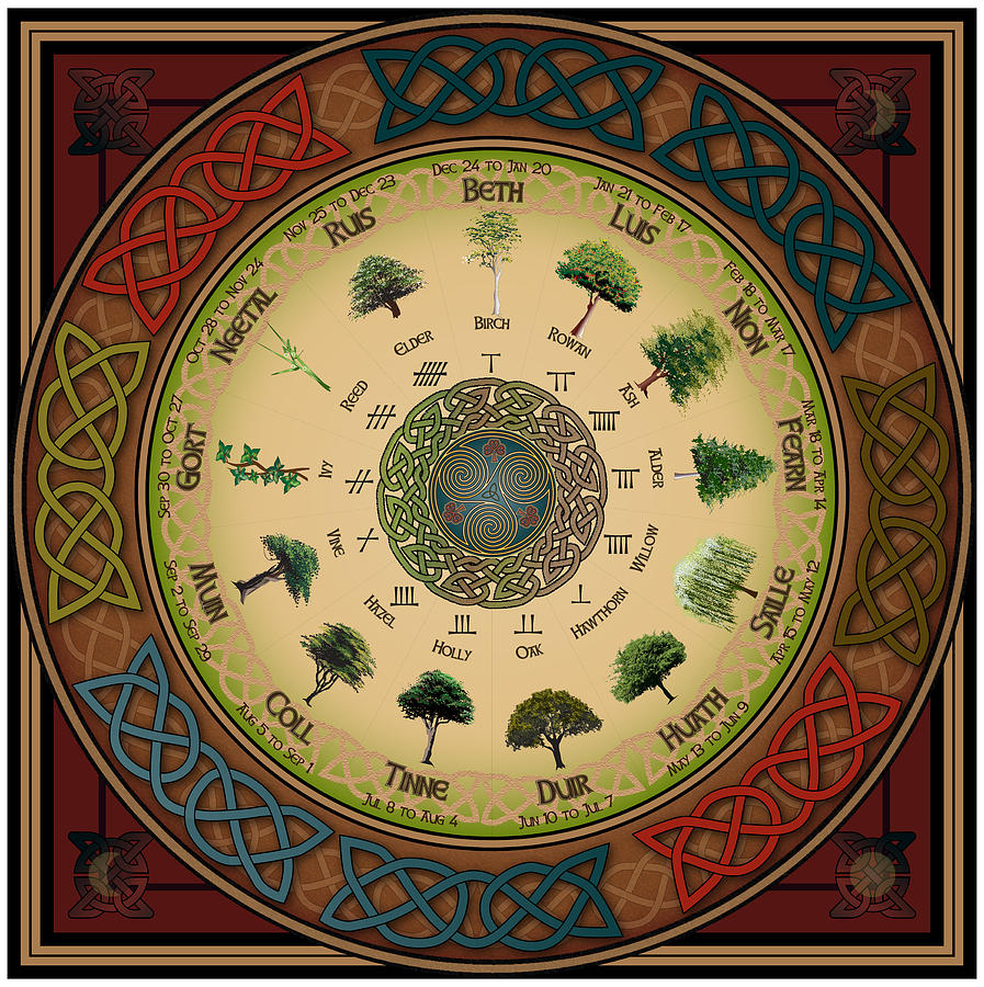 Celtic Calendar Wood : Ogham tree calendar digital art by ireland calling