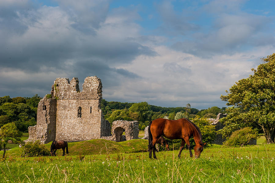 Ogmore Castle Photograph - Ogmore Castle by David Ross