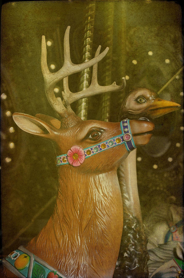 Carousels Photograph - Oh My Deer by Jan Amiss Photography
