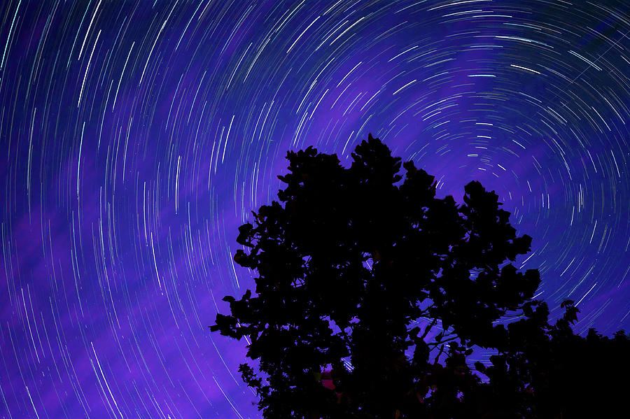 Ohio Night Sky - Star Trails Photograph