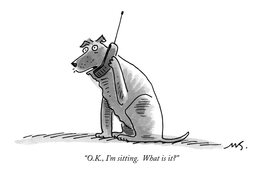 O.k., Im Sitting.  What Is It? Drawing by Mick Stevens