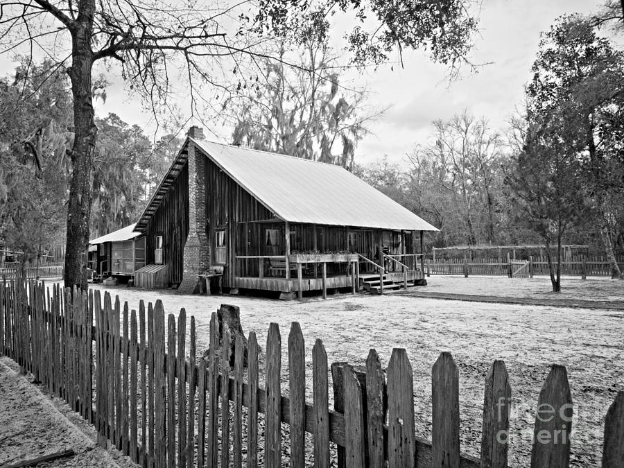 Chesser Homestead Photograph - Okefenokee Home by Southern Photo