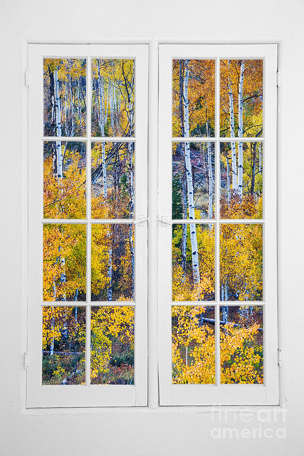 Autumns Photograph - Old 16 Pane White Window Colorful Fall Aspen View  by James BO Insogna