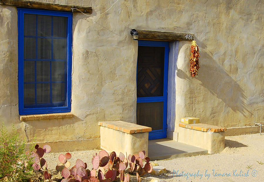 Arizona Photograph - Old Adobe House 2 by Tamara Kulish
