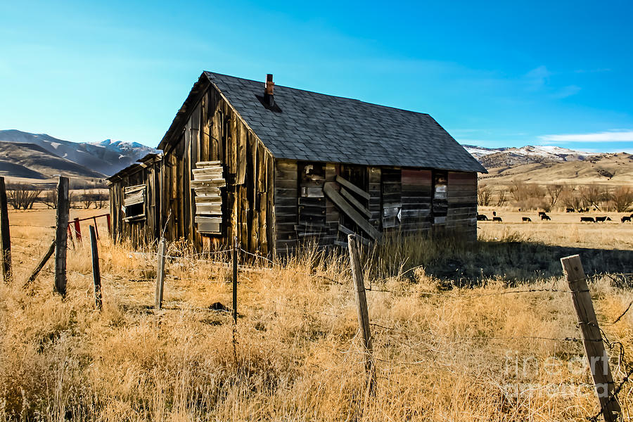 Barn Photograph - Old And Forgotten by Robert Bales